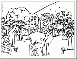 awesome sloth rainforest animals coloring pages with jungle animal