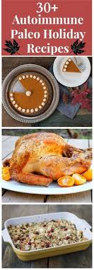 70 paleo aip gaps friendly thanksgiving recipes helix