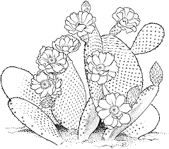 desert coloring pages getcoloringpages com