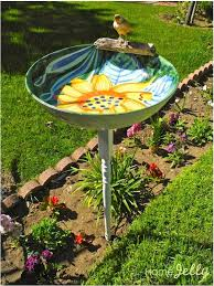 bird bath water bird cages
