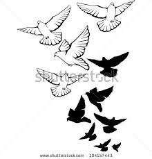 dove flying stock images royalty free images u0026 vectors shutterstock