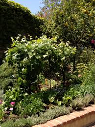 Kitchen Gardens Design Garden Inspiration Robinson Gardens Velvet U0026 Linen