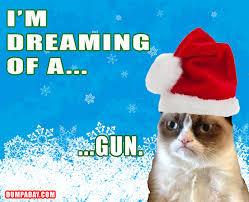 White Christmas Meme - im dreaming of a white christmas angry cat dumpaday gun gear