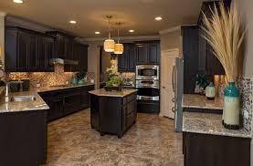 Kitchen Cabinets Display Painted Kitchen Cabinet Ideas Door Display Racks Glass Front