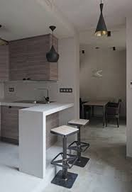 simple kitchen design in moscow apartment with pendant lamp