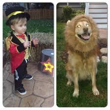 Lion Halloween Costume 25 Lion Costume Dog Ideas Pet Costumes