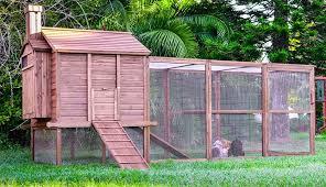 Building Backyard Chicken Coop White Backyard Chicken Coop Benefit Of Diy Backyard Chicken Coop