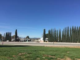 Twin Pines Landscaping by Twin Pines Mobile Home Park Rentals Yucaipa Ca Apartments Com