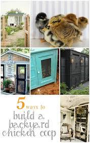 Building Backyard Chicken Coop 5 Ways To Build A Backyard Chicken Coop Infarrantly Creative