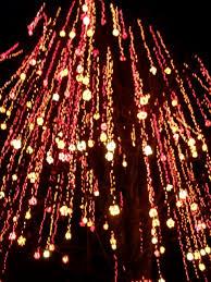 lights of christmas stanwood the lights of christmas warm beach carla s funky art