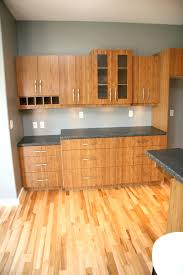 bamboo cabinets home depot lovely bamboo kitchen cabinets home depot bamboo cabinets bamboo