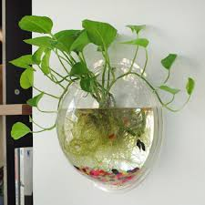 Home Decoration Plants Home Decoration Pot Plant Wall Mounted Hanging Bubble Bowl Fish