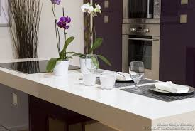 Pictures Of Modern Kitchen Designs Pictures Of Modern Purple Kitchens Design Ideas Gallery