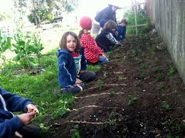 Urban Gardens San Francisco - country u0027s first k 8 urban farm sprouting in san francisco