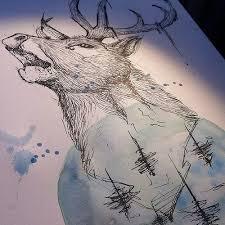 cervo deer cervo watercolor watercolour watercolorta u2026 flickr