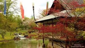 japanese garden journey around the globe