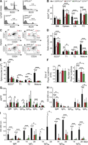 the intramembrane protease sppl2a promotes b cell development and