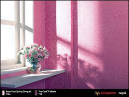 beautiful paints asian paints specials trendy interior ideas