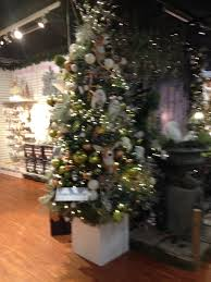 Real Christmas Trees Manchester November 2017 Ghostly Tom U0027s Travel Blog U2026