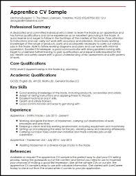 example of a cv hitecauto us