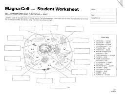 animal cell coloring page elementary eliolera com