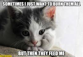 Feed Me Meme - sometimes i just want to burn them all but then they feed me