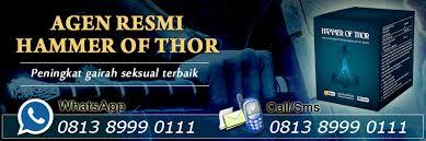 agen resmi hammer of thor asli di indonesia hammer of thor