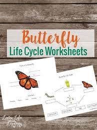 80 best butterfly unit images on pinterest preschool science