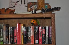 Ark Bookshelf by Bubbles And His Bookshelf Album On Imgur