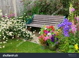 cottage garden flowers cottage garden wooden bench flowers containers stock photo