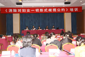 society china shadow women s research society holds cedaw activity