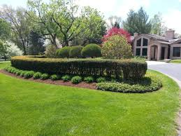 Fake Bushes Fresh Beautiful Red Bushes For Landscaping 16974