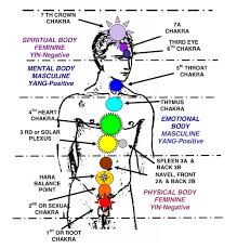 sacral chakra location activate the 7 chakras with this powerful chakra meditation