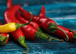 kitchen chili pepper wall art chili pepper christmas chile art fine art america