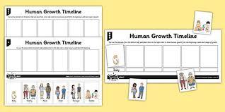 human growth timeline activity sheet human growth human life
