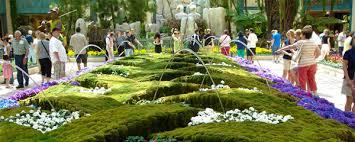 Bellagio Botanical Garden Bellagio Conservatory And Botanical Gardens Free Day Two