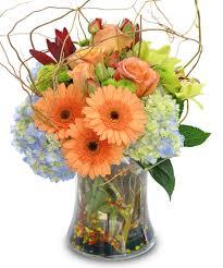 Flower Stores In Fort Worth Tx - nature u0027s whimsy fort worth florist u0026 flower shop delivering