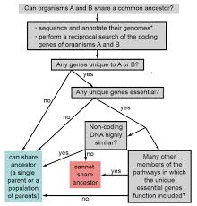 using taxonomically restricted essential genes to determine wheth