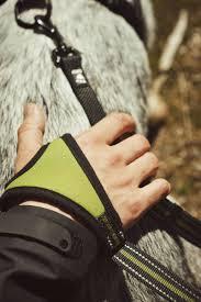 jogging with australian shepherd jogging leash hurtta com