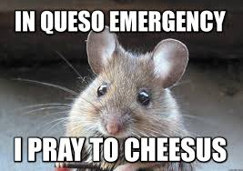 Cheese Meme - after seeing cheese twice on the front page today this is all i