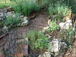 Rock Garden Florida My Herbal Notebook Archive A Florida Rock Garden