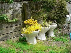 Container Gardening Ideas Creative Garden Container Ideas