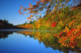fall wallpapers quality download free