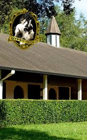 180 best equestrian stables images on pinterest dream barn