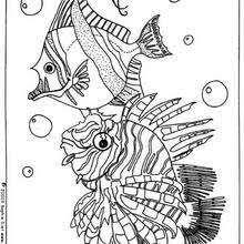 fish bubbles coloring pages hellokids