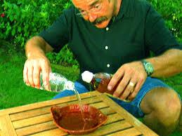 Home And Garden Television Design 101 Summer Gardening Ideas U0026 Tips Hgtv