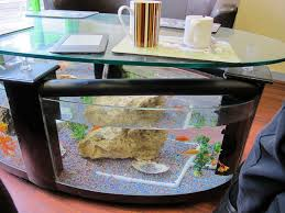 coffee table fascinating coffee table fish tank photos