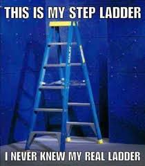 Ladder Meme - this is my step ladder i never knew my real ladder meme xyz