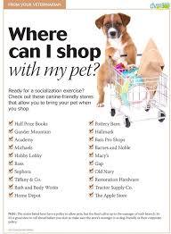 home depot black friday dog best 25 new puppy checklist ideas on pinterest new puppy dog