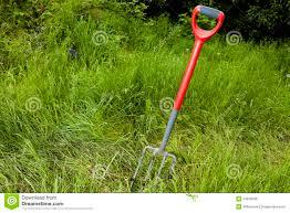garden fork in long grass royalty free stock photos image 24878638